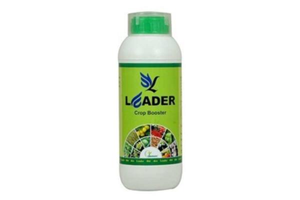 Calcium Nitrate Fertilizer Supplier