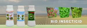 bio insecticide Wholesaler, Distributors & supplier in Agra, Gujarat, India