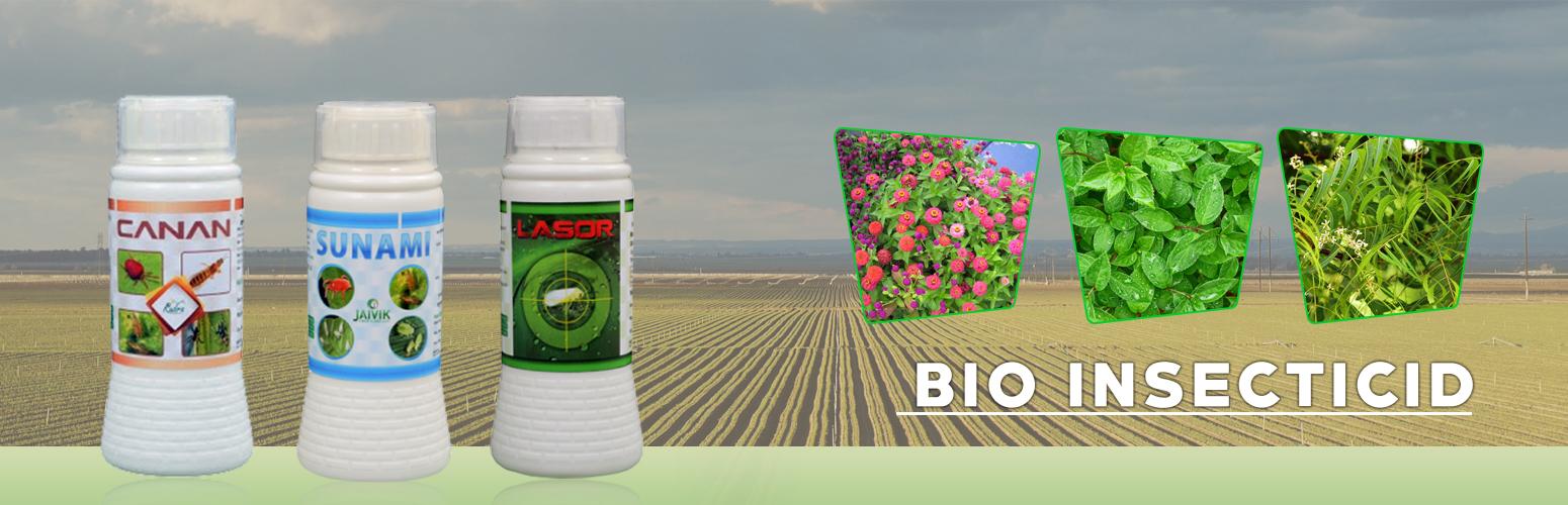 Seaweed Fertilizer Manufacturer