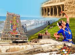 Humic Amino Ball in Tamil Nadu
