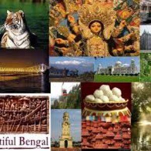 Humic Amino Ball in west bengal